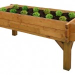 Raised Veggie Box